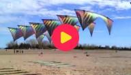 dansende vliegers