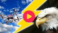 arend vs drone