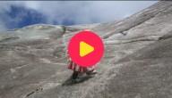 Boliviaanse klimsters