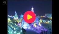 ijsfestival