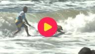 surfhond