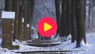 Sneeuw op school