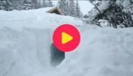 Sneeuwtunnel