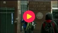 Scholen New York