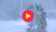 sneeuwstorm VS