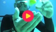 Ei onder water