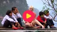 Karrewiet in Vietnam - deel 2