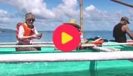 Karrewiet op de Filipijnen