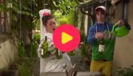 Knutserellen met Conchita: Stoombootofoon