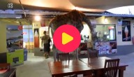 Giraf op restaurant