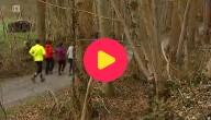 Mensen in het bos