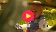 Babies op waterlelies