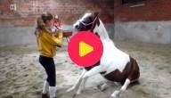 Jorunn en pony