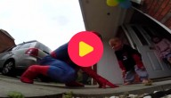 Spiderpapa