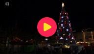 Grootste kerstboom van de hele wereld