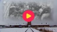 70 jaar na Auschwitz