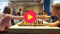 kampioenschap schaken