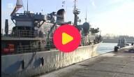 Godetia marineschip