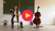 cello piepschuim