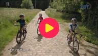 Zot van fietsen