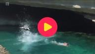 hond duikt in het water