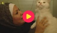 Kat en familie weer samen