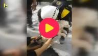 Dit hondje kon gered worden