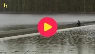 fietsen door water