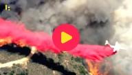 bosbranden LA