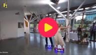Dansen op hoverboards