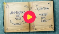 Het dagboek van Sacha: Scampi met look