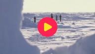 Karrewiet: Noordpoolmarathon
