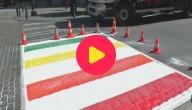 Karrewiet: Zebrapad wordt regenboogpad