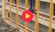 Karrewiet: Een gebouw beklimmen met... een stok?!