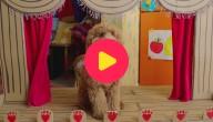 Waffie, de wonderhond: Aflevering 25 - Waffies prachtige kunst