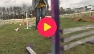 Springwedstrijd voor konijnen