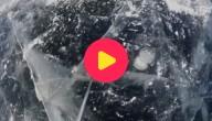 Karrewiet: golfen op ijs