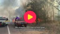 Vlaamse kinderen in Australië vertellen over felle bosbranden