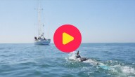 Fransman wil Stille Oceaan overzwemmen
