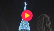 kw_grootste kersboom ter wereld
