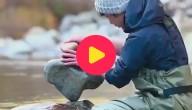 Karrewiet: Bouwen met stenen!