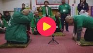 Karrewiet: Bijzonder spelletje touwtrekken