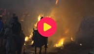 Karrewiet: Paarden springen door vuur