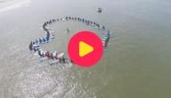 Karrewiet: Leidag aan zee