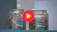 rospot-tegen-kanker