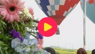 Karrewiet: Ballonnenbruiloft