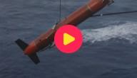 Karrewiet: Recordduik onder water