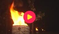 Karrewiet: vuurkorven tegen vrieskou