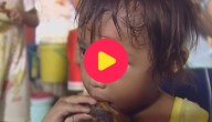 Karrewiet: Filipijnen