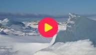 Karrewiet: Klimaatvluchtelingen in Spitsbergen